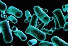 odontoiatra.it, sterilizzazione, disinfezione